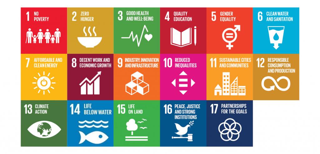 2030 UN SDGs